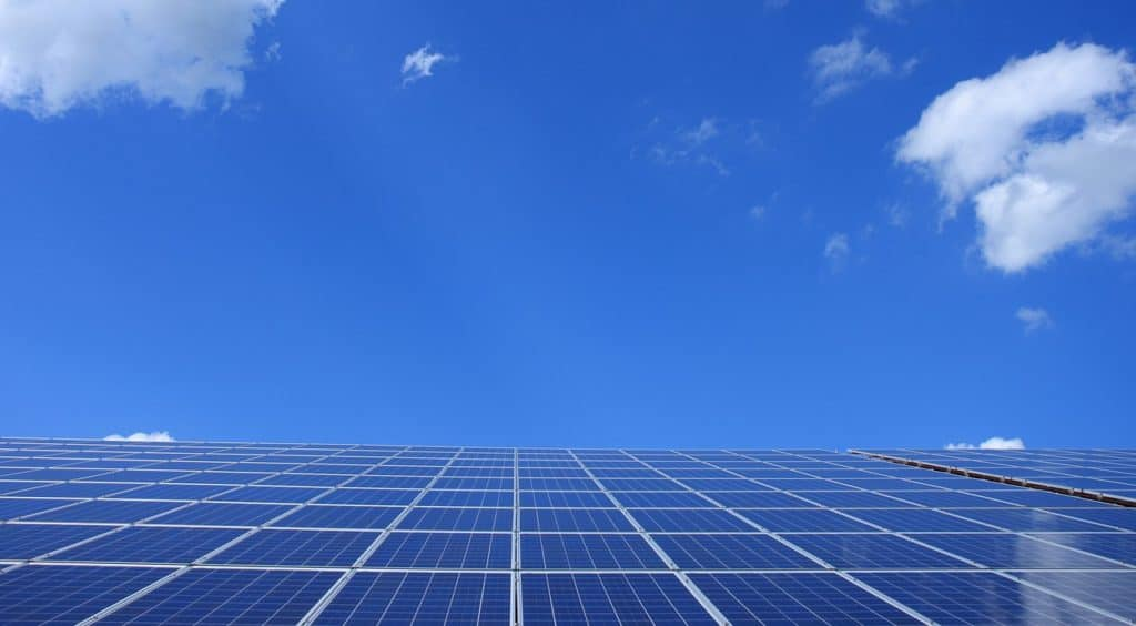 Going Green: Is Your Business Doing Its Bit?