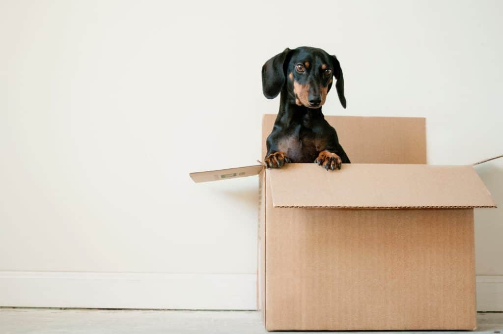 How To Ensure A Smooth House Move
